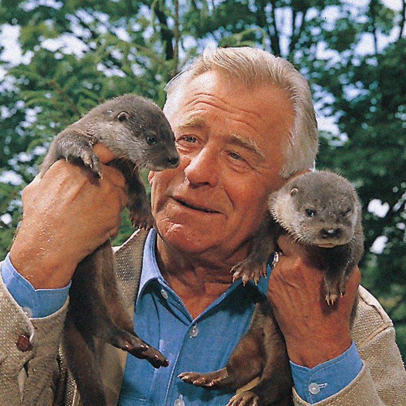 Heinz Sielmann mit jungen Ottern. Mit seiner Beobachtung der Spechte wurde er 1954 berühmt. Jede Menge Film- und Fernsehpreise wie Deutscher Filmpreis, Goldene Kamera und Silberner Berlinale-Bär sollten folgen.