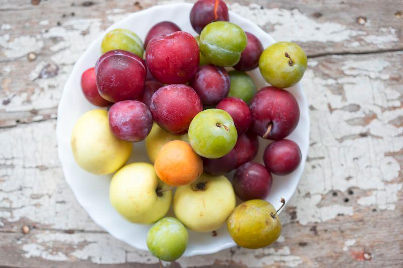Im Juli werden Pflaumen, Mirabellen und Zwetschgen endlich reif - genießen Sie sie also am besten direkt aus Ihrem Garten! Sie haben weder Garten noch Pflaumen-Baum? Überhaupt kein Problem, die süßen Früchte gibt es ab sofort auch bei dem Obsthändler Ihres Vertrauens.