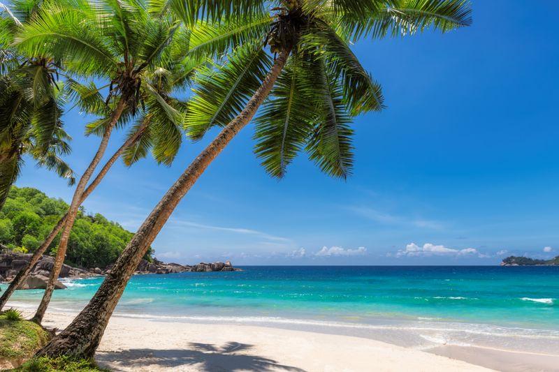 Idyllische Insel-Kulissen laden zum Träumen ein und nicht zum Fürchten. Doch bei den folgenden Inseln sollte man sich nicht von paradiesischen Stränden, Palmen und weißem Sand ablenken lassen. Denn hier lauern Gefahren - vor allem für den Menschen. So auch auf North Sentinel Island - eine Insel im Indischen Ozean, die sich aus gutem Grund vom Rest der Welt abgeschnitten hat ...