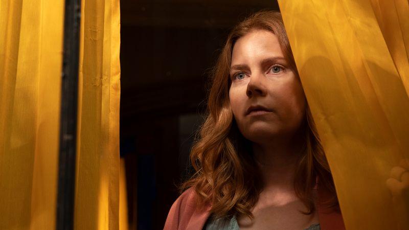 Die an Platzangst leidende Kinderpsychologin Anna Fox (Amy Adams) beobachtet vom Fenster ihres Hauses ein Verbrechen, das ihr Leben auf dem Kopf stellen wird.