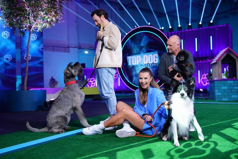 """RTL kündigt """"Top Dog Germany - Der beste Hund Deutschlands"""" als """"flauschigste Action-Show des Sommers"""" an. Jan Köppen (links), Laura Wontorra und Frank Buschmann machen sich schon mal mit den Vierbeinern vertraut."""